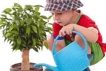 Kids Watering Plant